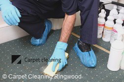 Carpet Cleaning Ringwood 3134
